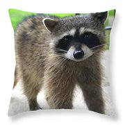 Bendit Mcstubb Throw Pillow