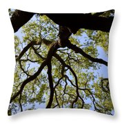 Beneath The Oak Throw Pillow
