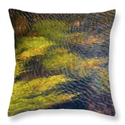 Beneath The Water Throw Pillow