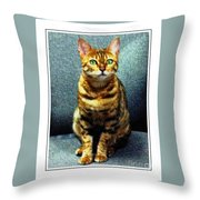 Bengal Cat Digital Oil Pastel Throw Pillow