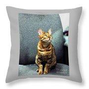 Bengal Cat Oil Pastel  Throw Pillow