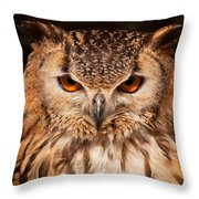 Bengal Owl Throw Pillow