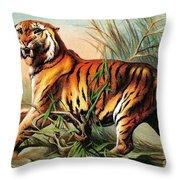 Bengal Tiger, Endangered Species Throw Pillow
