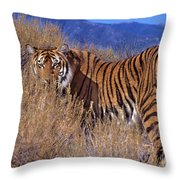 Bengal Tiger Endangered Species Wildlife Rescue Throw Pillow