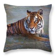 Bengal Tiger Laying Water Throw Pillow