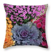 Bennington Farm 8273 Throw Pillow