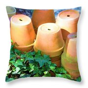 Ben's Pots Throw Pillow