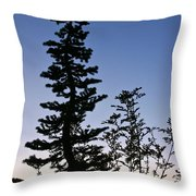 Bent Conifer Throw Pillow