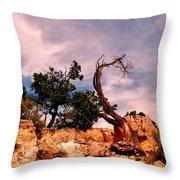 Bent The Grand Canyon Throw Pillow