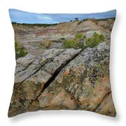 Bentonite Quarry On Little Park Road Throw Pillow