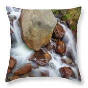 Benzai-ten, The Japanese Goddess Of Water, Music, Wisdom, And The Arts  Throw Pillow