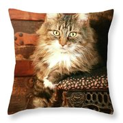 Beo Woof Posed Throw Pillow