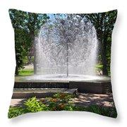 Berger Fountain2 Throw Pillow