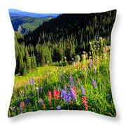 Berkeley Park Throw Pillow
