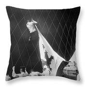Berlin: Balloon Race, 1908 Throw Pillow