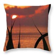 Bermuda At Rest Throw Pillow