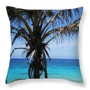 Bermuda Blues Throw Pillow