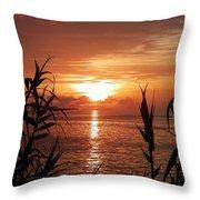 Bermuda Evening Throw Pillow
