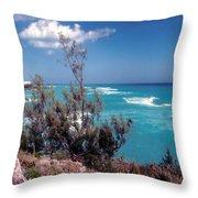 Bermuda Summer Shore Throw Pillow