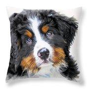 Berner-sennenhund Throw Pillow