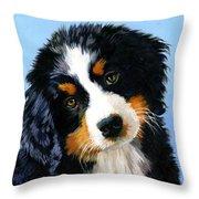 Bernese Mountain Puppy Throw Pillow