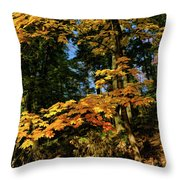 Bernharts Dam 15-126 Throw Pillow
