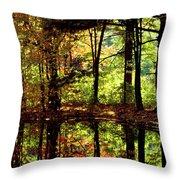 Bernharts Dam Fall 94-006 Throw Pillow