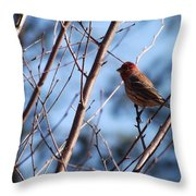 Berore 'the Storm' Throw Pillow