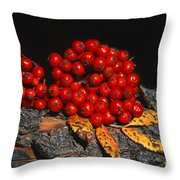 Berries And Bark Throw Pillow