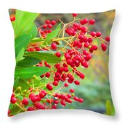 Berries Macro Throw Pillow