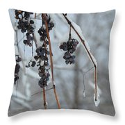 Berries Of Blue Throw Pillow