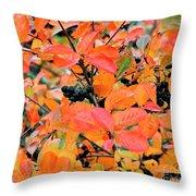 Berry Aronia Throw Pillow