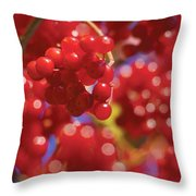 Berry Berry Red-2 Throw Pillow
