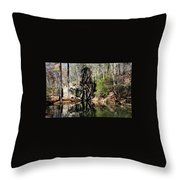 Berry College Water Wheel Throw Pillow