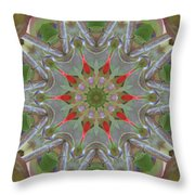 Berry Delight Throw Pillow