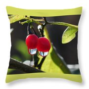 Berry Droplets Throw Pillow