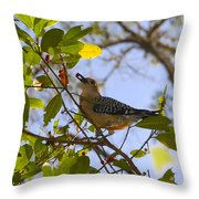 Berry Good Woodpecker Throw Pillow