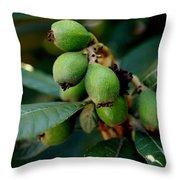 Berry II Throw Pillow