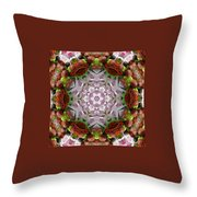 Berry Kaleidoscope Throw Pillow