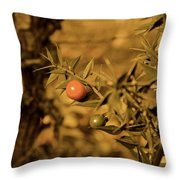 Berry  Throw Pillow