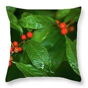 Berry's Throw Pillow