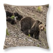 Beryl Springs Family Throw Pillow