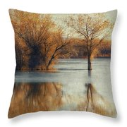 Beside Still Waters-color Throw Pillow