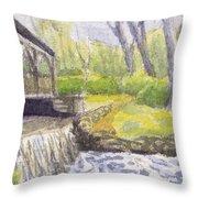 Beside The Dam Throw Pillow