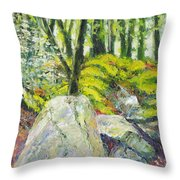 Beside The Routeburn Throw Pillow