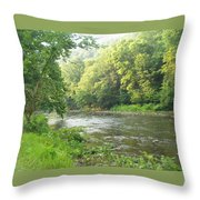 Beside The Still Waters Throw Pillow