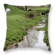 Beside The Still Waters Percherons Throw Pillow