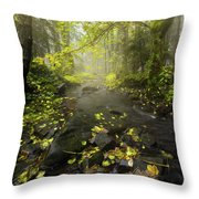 Beside The Stream Throw Pillow