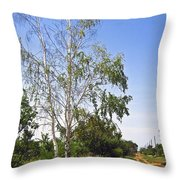 Beside The Village Road Throw Pillow