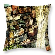 Beside The Wall Throw Pillow